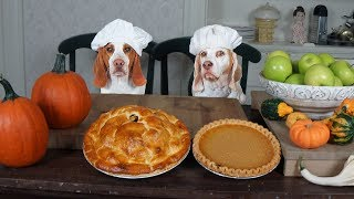 Chef Dogs Make Pies: Funny Dogs Maymo & Potpie