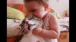 Funny Cats and Babies 👶😺 playing together  –  Cute Babies and Pets Compilation