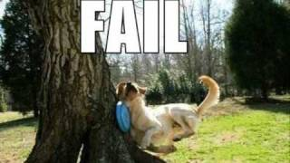 Very Funny Dogs 1
