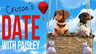 Ep 4: Crusoe the Dachshund's Date with Paisley! Cute/Funny Dog Date!
