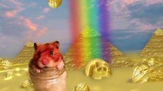 Talking Hamster Sings 'Gimme My Nuts' Music Video