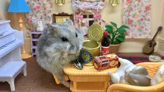 Tiny hamster enjoys canned sunflower seeds – Cute and funny videos of hamsters