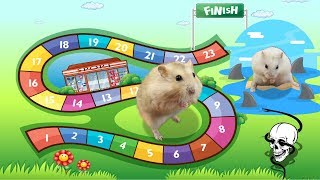 Two Cute Hamsters Toto And Mochi Playing Board Game