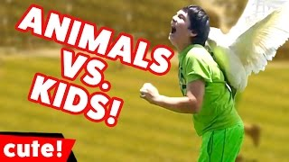 Funniest Animals vs Kids Videos Weekly Compilation November 2016 | Kyoot Kids