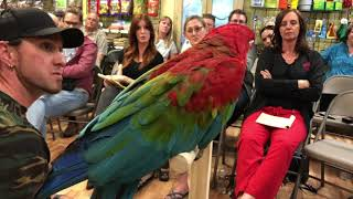 Have You EVER Seen a Macaw Do This Before?