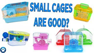 Small Cages Are GOOD For Hamsters?   Myths & Misconceptions – Episode One   JohnsAnimals