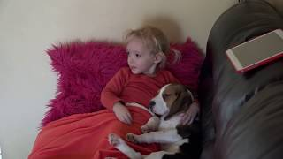 Little Child Loves to Hug her Cute Dogs When She Watching a movie