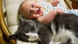 Funny Baby And Kitty Playing Together – Cute Cats Annoying Babies