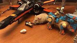 Ham Wars Hamsters Star Wars Lego fun