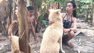 LOVELY SMART GIRL PLAYING BABY CUTE DOGS AT HOME HOW TO PLAY WITH DOG & FEED BABY DOGS #82