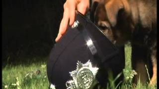 Police dog puppies – BBC Spotlight 2 – Puppy Walkers