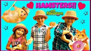 Hamsters for Kids! HAMSTER FACTS – Kids Playing with Family Fun Hamster Pet