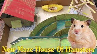 Funny Hamster In New Maze House – Best House For Hamsters – New Maze House Of Hamsters