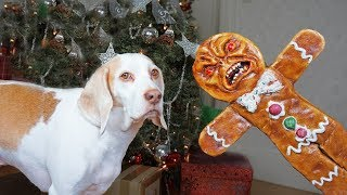 Dogs vs Evil Gingerbread Man Prank: Funny Dogs Maymo & Potpie