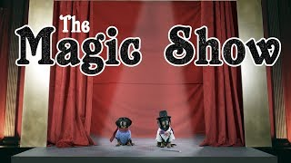 Ep 6: The Magic Show – Funny Dogs Put on Cute Magic Show