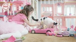 Funny Cats Protecting Babies Compilation (2019)