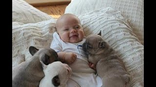 Pet Cute Animals – Top 20 Cute Dogs and Cats Doing Funny Things with Kids Compilation 2017