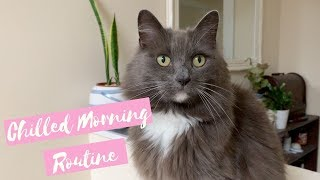 Cute Cats Morning Routine