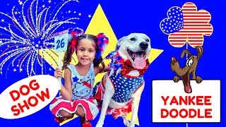 Yankee Doodle DOG SHOW! CUTE Dogs In Patriotic Costumes JULY 4th