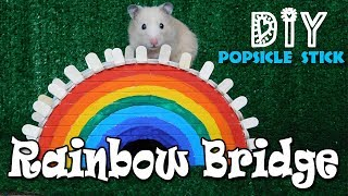 Rainbow House for Hamster. Rainbow Bridge for Hamsters. DIY Hamster toys