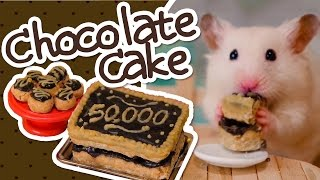 🍫 Hamster-Safe Chocolate Cake | HAMSTER KITCHEN 🍫
