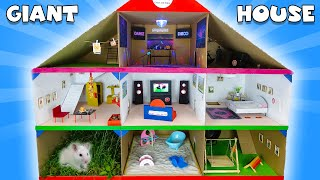 GIANT Cardboard Hamster HOUSE 🐹 Hamster in 3-Level PLAYGROUND 🐹 Hamster Playhouse
