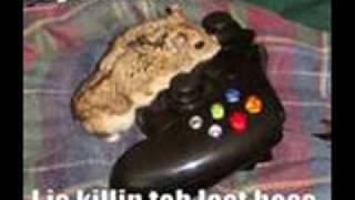 Funny Hamsters 3