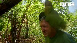 Shagged by a rare parrot | Last Chance To See – BBC