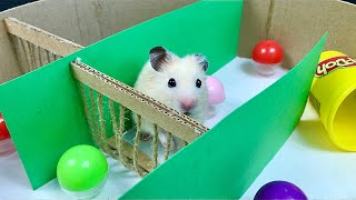 My Funny Pet Hamster in 4-Level Round Maze