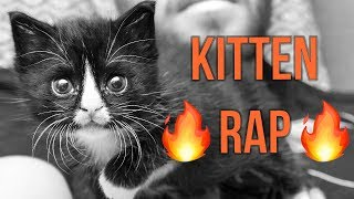 Badger's Kitten Lady Rap!