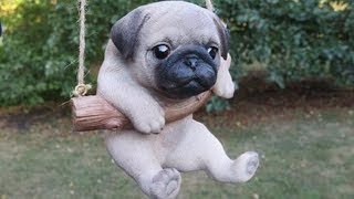 Funny Cute Pug Dogs Moments Compilation #4 – So Cute Dogs Video