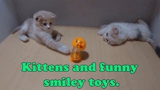 Kittens and funny smiley toys