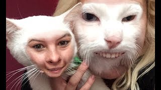 Funny Cats And Dogs Face Swap With Owners – Try Not To Laugh Or Grin