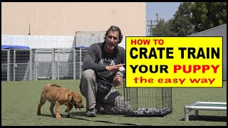 How to CRATE Train Your Puppy – The EASY Way to Crate Train Your Dog