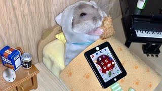 How this hamster spends his weekend…  (2019 Top funny #hamster #mukbang video)