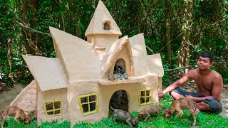 Rescue Newborn Kitten Building Mud House Cat And Dog House