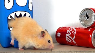 My Funny Pet Hamster takes on the COCA COLA Obstacle Course