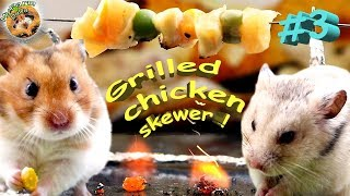 Hamster eating chicken Hamster cooking #3