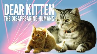 Dear Kitten: The Disappearing Humans – Purina® Friskies