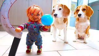 Dogs vs Cild's Play Chucky Prank 3 : Funny Dogs Louie & Marie