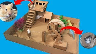 Funny Hamsters in Wheel – Making Wheel Toy For Hamster From Cardboard