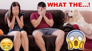 Funny Dog Reaction to Family Crying – PRANK (BEST REACTION EVER)