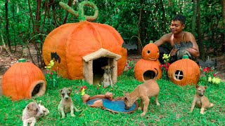 Rescue Abandoned Puppies Building Pumpkin Mud House Dog for Celebrating Halloween