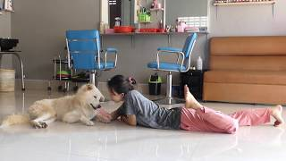 LOVELY SMART GIRL PLAYING BABY CUTE DOGS AT HOME HOW TO PLAY WITH DOG & FEED BABY DOGS #101