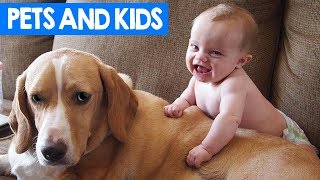 Kids And Pets Compilation 2018 | Funny Cats, Dogs and Kids Moments | Cute Critters TV