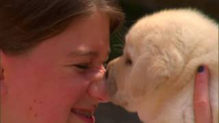 The Magic of Kids and Puppies