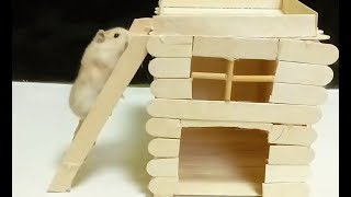 Making Popsicle stick house for My Funny Hamster
