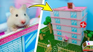 Hamster Hospital Maze 🏥 The Adventures of Granny Homura in the Hospital