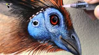 Reflecting Nature: Creating the Wall of Birds