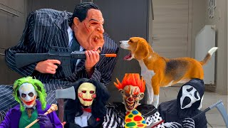TOP 10 Halloween Costumes  Vs DOG Pranks  : Funny Dogs Louie & Marie